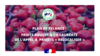 Plan de relance : Fruits Rouges & Co lauréate de l'appel à projets « Relocaliser »